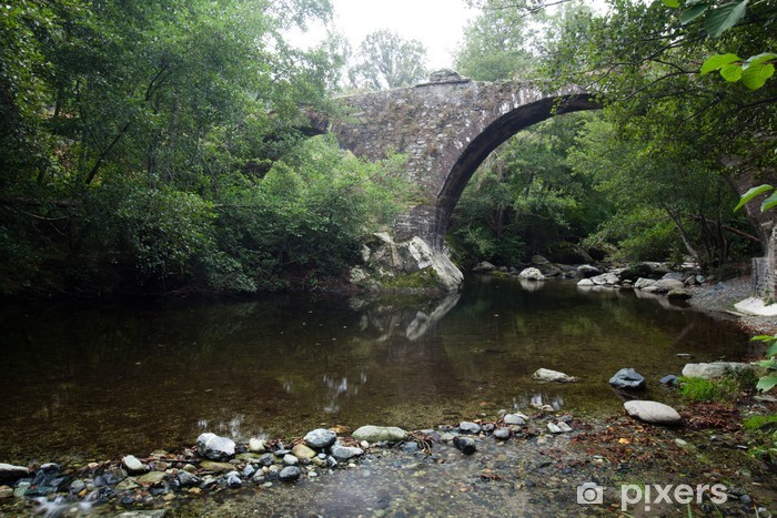Vinyl-Fototapete Pont sur la rivière génois Bevinco en Haute Corse - Infrastruktur