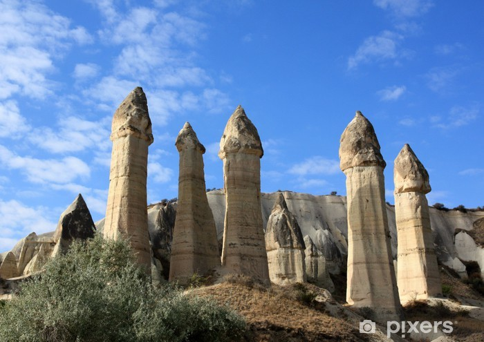 Cheminees De Fee Dans La Vallee De L Amour En Cappadoce Wall Mural