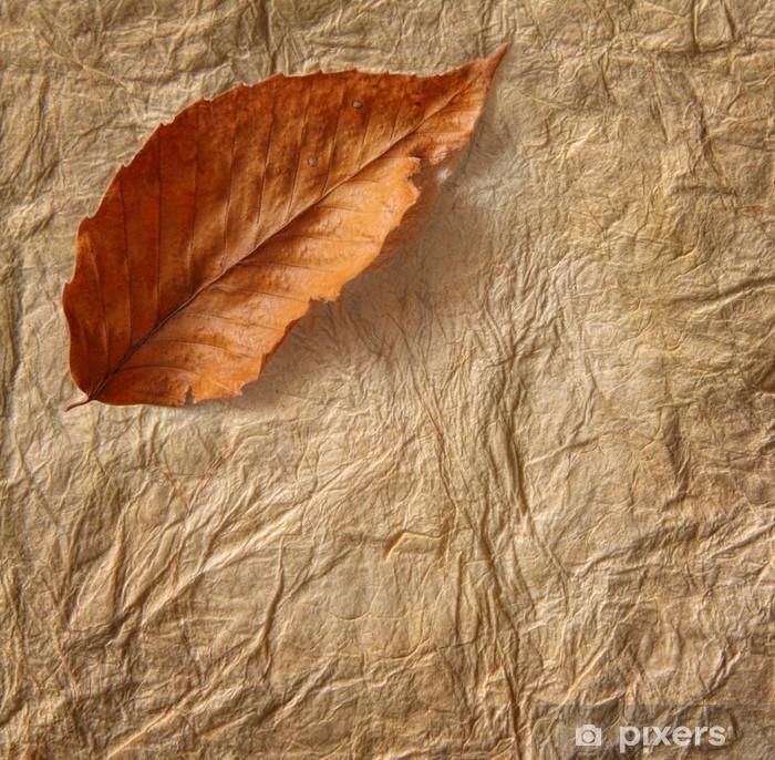 Naklejka Pixerstick Zbliżenie stary pergamin z liściem - Tła
