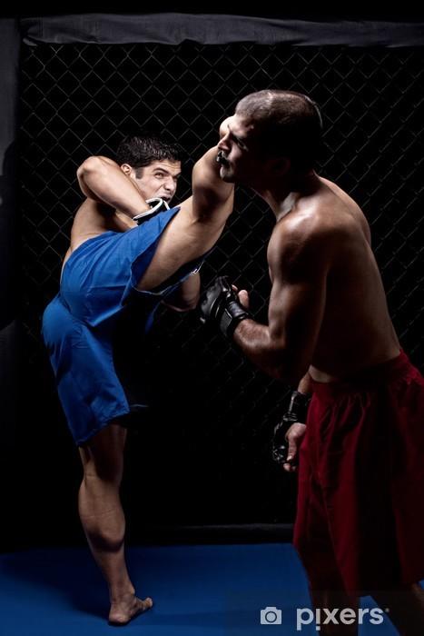 Vinilo Pixerstick Artes marciales mixtas lucha - Temas