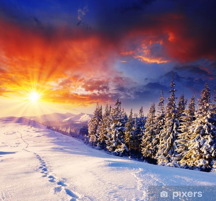 Papier peint vinyle D hiver -