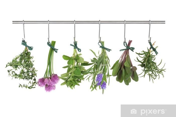 Papier peint vinyle Herbes suspendu et séchage - Herbes
