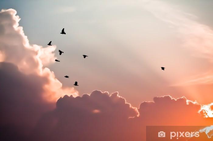 Afwasbaar Fotobehang Vogels boven de wolken - Bestemmingen