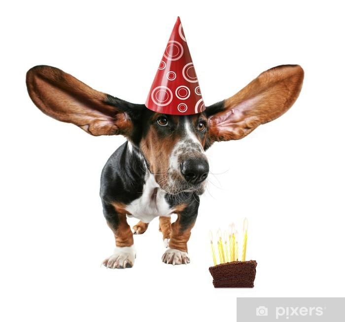 Naklejka Pixerstick Karta pies cake - Świętowanie