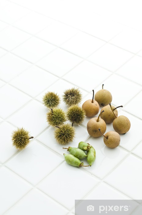 Sticker Pixerstick 秋 の 山 菜 - Fruits