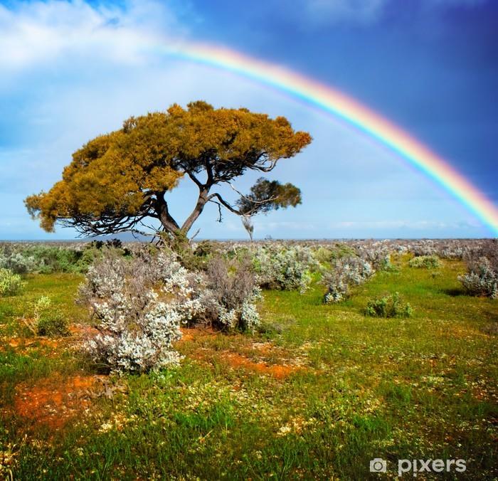 Plakat Kolory teczy - Cuda natury