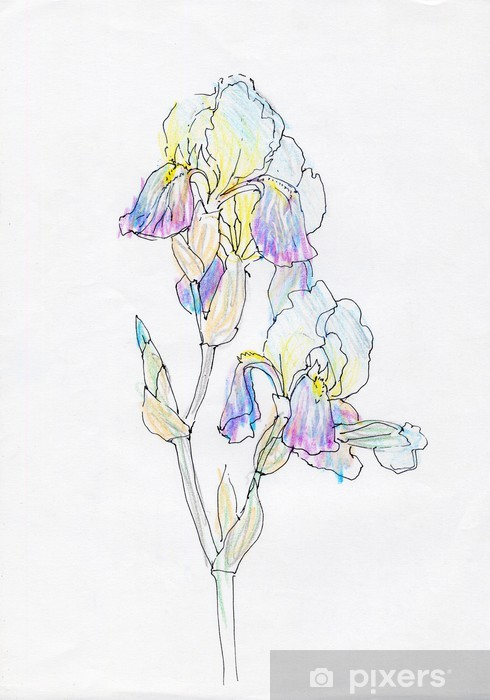 Sticker Pixerstick Iris - Textures