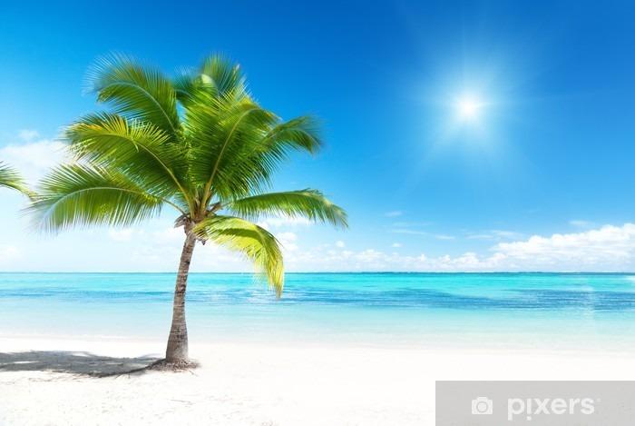 Vinyl-Fototapete Palmen und Meer - Palmen
