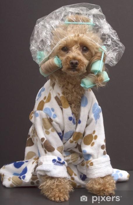 Fototapeta winylowa Dog łazienka - Uroda i pielęgnacja ciała