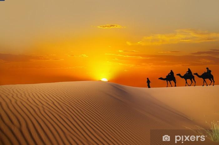 Sahara Vinyl Wall Mural - Desert