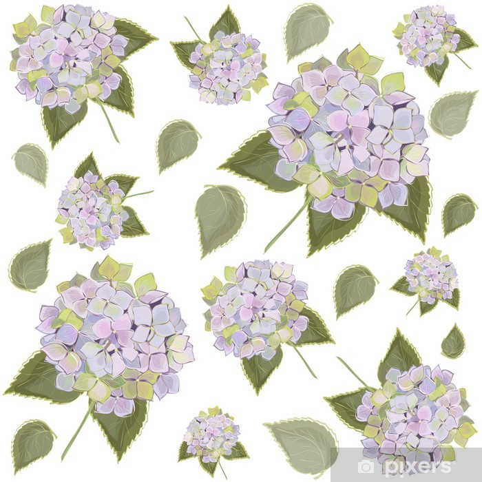 Background. Hydrangea. Pixerstick Sticker - Backgrounds