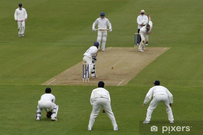 cricket action Pixerstick Sticker - Outdoor Sports