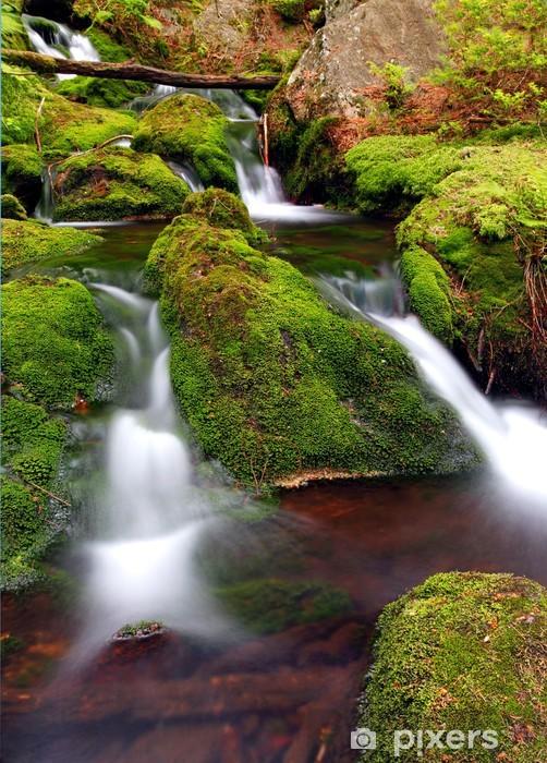 Fototapeta winylowa Mountain Stream z mchem skały. - Woda