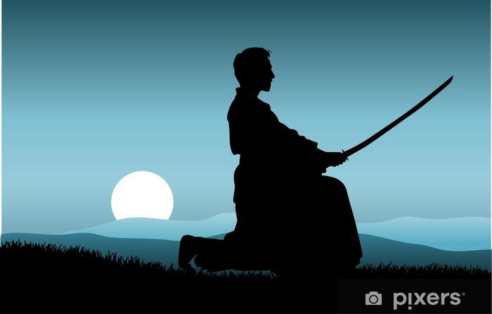 Fototapeta winylowa Kung Fu - Kung-fu