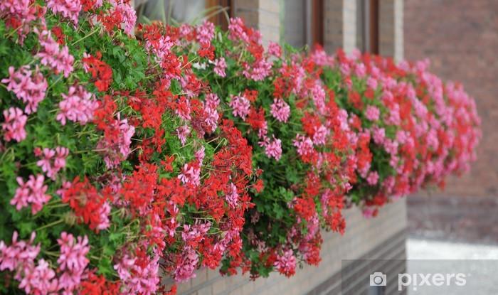 Fototapeta winylowa Balkon - Dom i ogród
