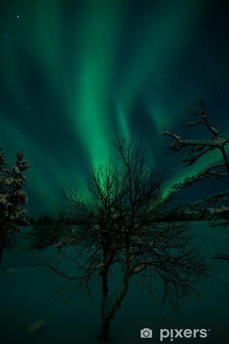 Zelfklevend Fotobehang Brandende struik - Wonderen der Natuur
