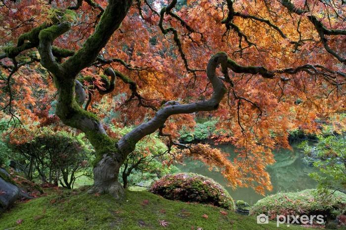 Papier peint vinyle Érable rouge, le jardin japonais - Thèmes