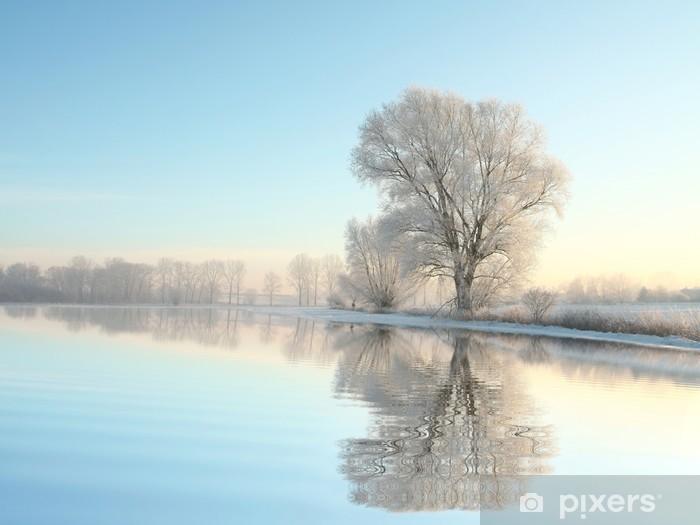 Fototapeta winylowa Drzewa zimą pokryte szronem na bezchmurnym poranku - Tematy