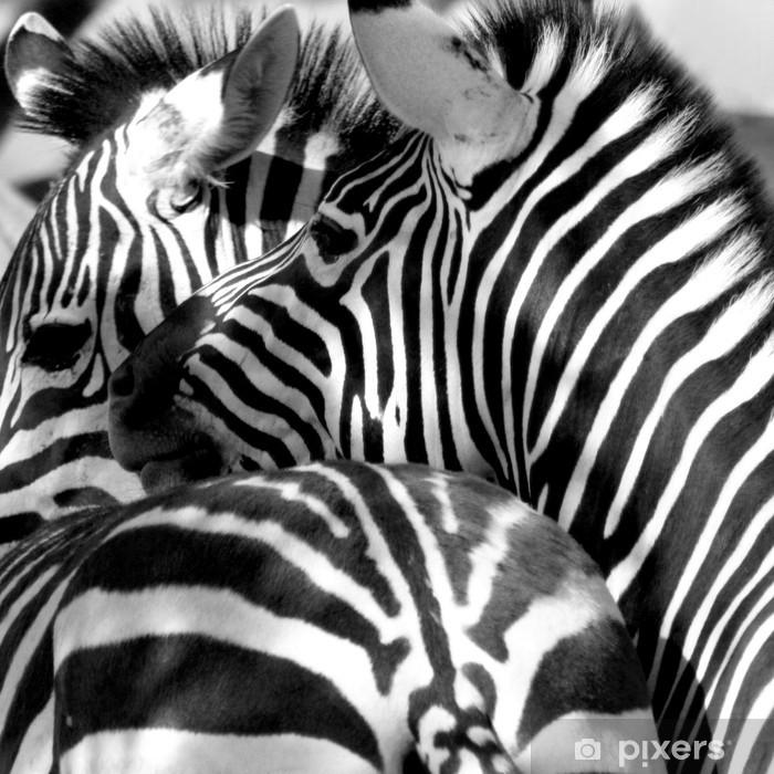 Fototapeta winylowa Zebra zapiekanka - Tematy