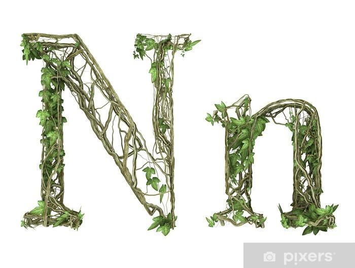 Naklejka Pixerstick Bluszcz charakter czcionki roślin - Cuda natury