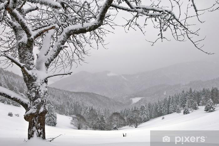 Fototapeta winylowa Zima - Pory roku