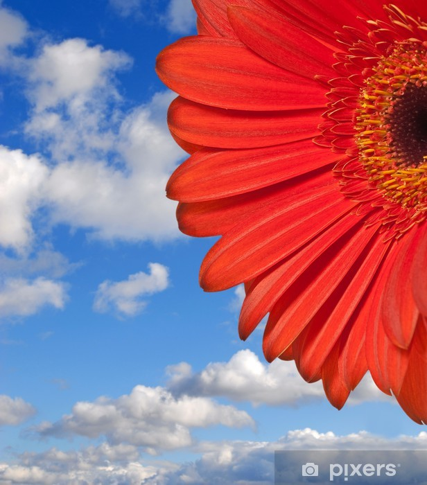 Naklejka Pixerstick Czerwony kwiat i błękitne niebo - Kwiaty