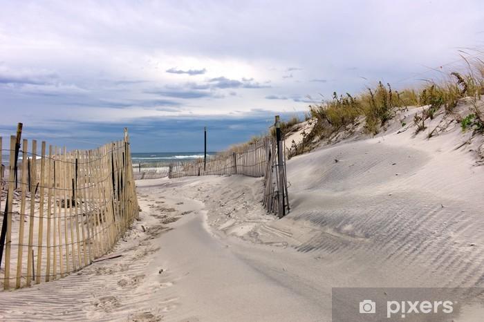 Path through sand dunes on a beach on Long Island, New York Vinyl Wall Mural - Holidays