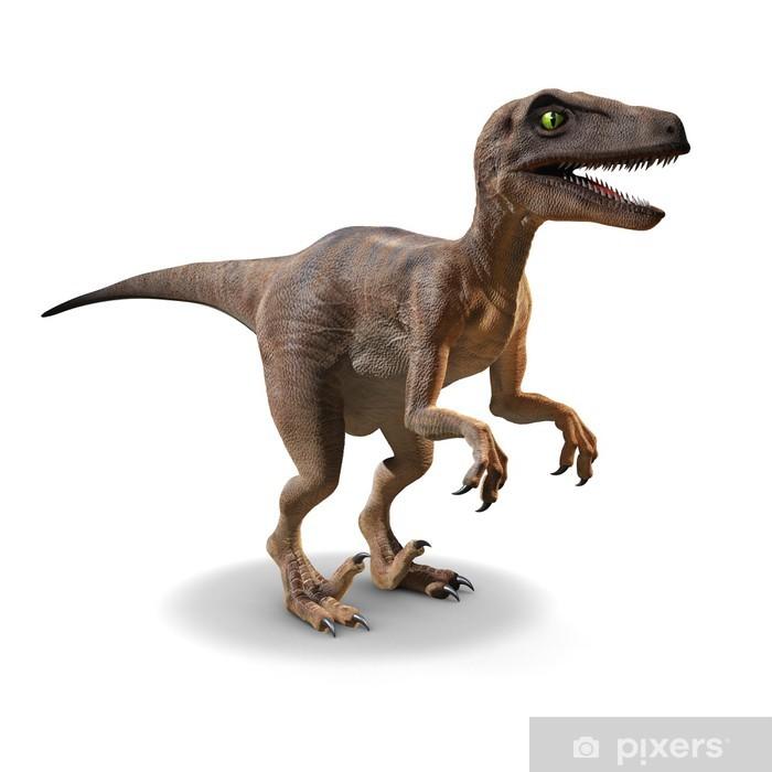 Papier peint vinyle 3d Velociraptor - Sticker mural