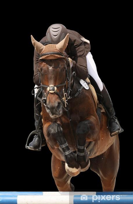 Mural de Parede em Vinil Show jumping horse isolated on black - Desportos Individuais