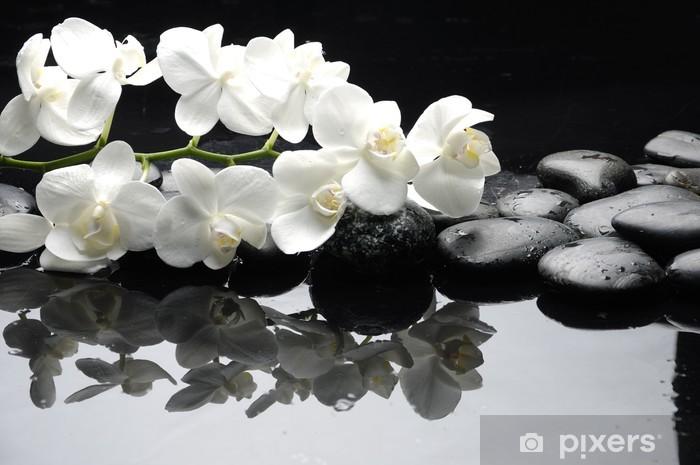 Vinilo Pixerstick Cerca orquídea blanca con gotas de agua de piedra - Estilos