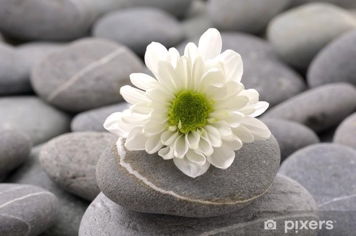 Naklejka Pixerstick Martwa natura z białymi kamyczkami, kwiatowych i szary - Znaki i symbole