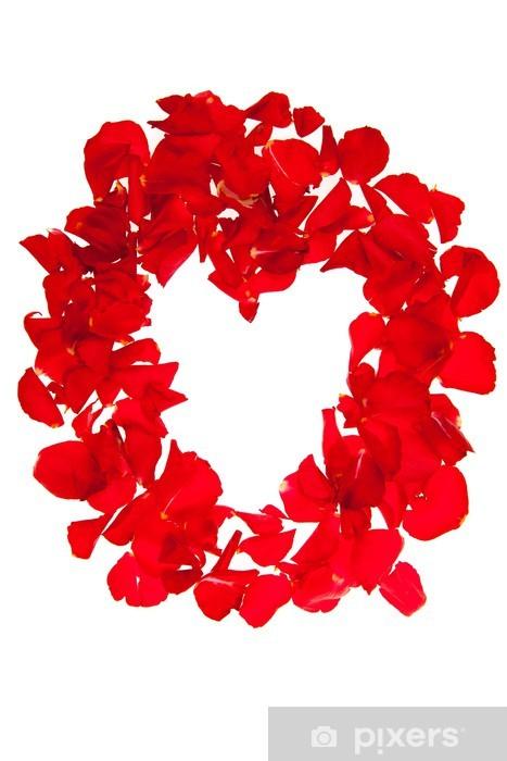 Fototapeta winylowa Czerwone płatki róż samodzielnie na biały - Walentynki - Święta międzynarodowe