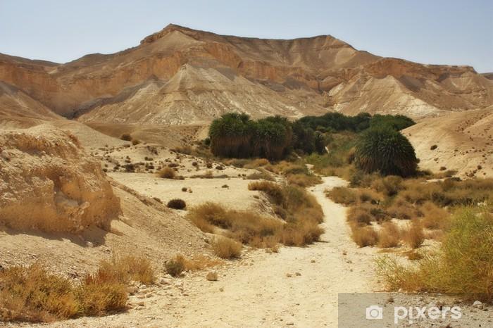 Sticker Pixerstick Sentier du désert - Désert