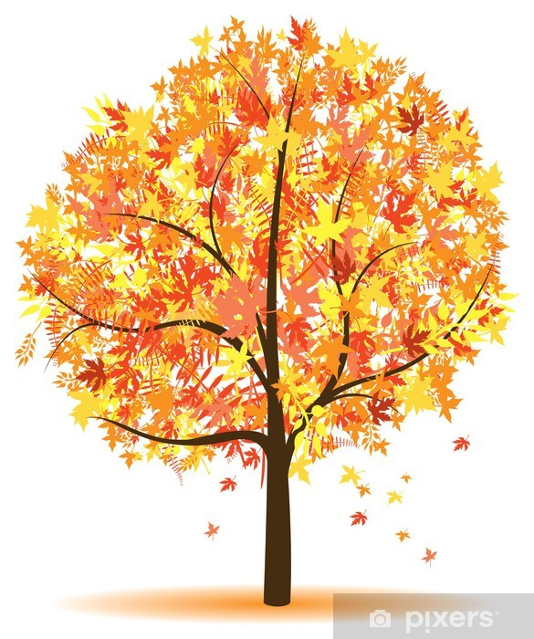Image result for how to draw an autumn trees