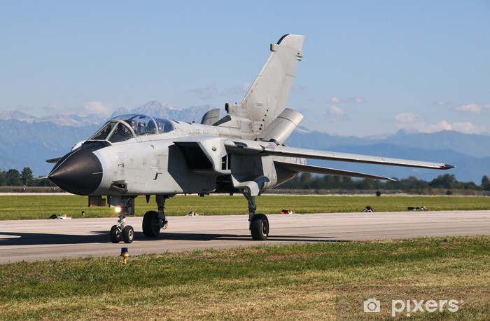 Panavia Tornado military jet during taxiing Pixerstick Sticker - Themes