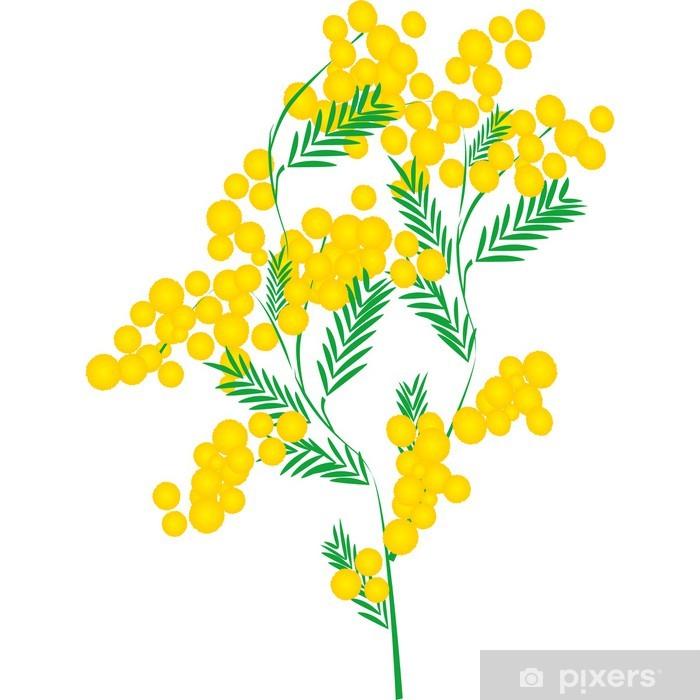 Vinyl-Fototapete Mimose - Blumen