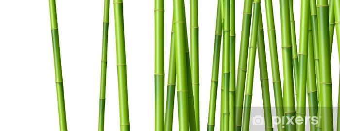 Papier peint vinyle Bambous sur fond blanc 2 - Plantes