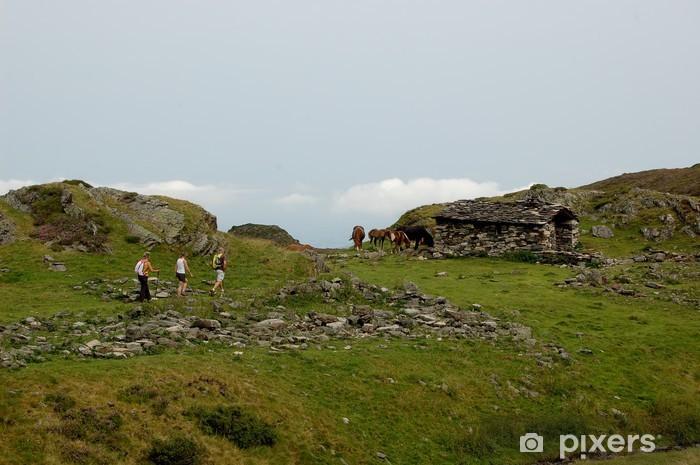 Naklejka Pixerstick Rando pirenejski - Sporty na świeżym powietrzu