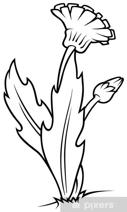 Carta Da Parati Fumetti Bianco E Nero.Carta Da Parati Tarassaco Bianco E Nero Fumetto Illustrazione