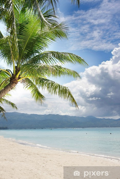 Carta Da Parati Spiaggia Di Sabbia E Palme Sul Mare E Del Cielo Di