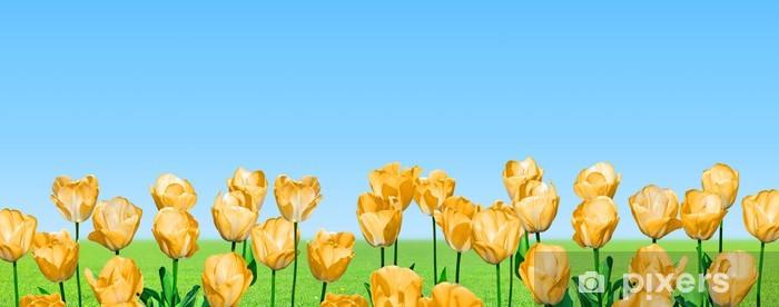 Naklejka Pixerstick Żółte tulipany panoramiczne - Kwiaty
