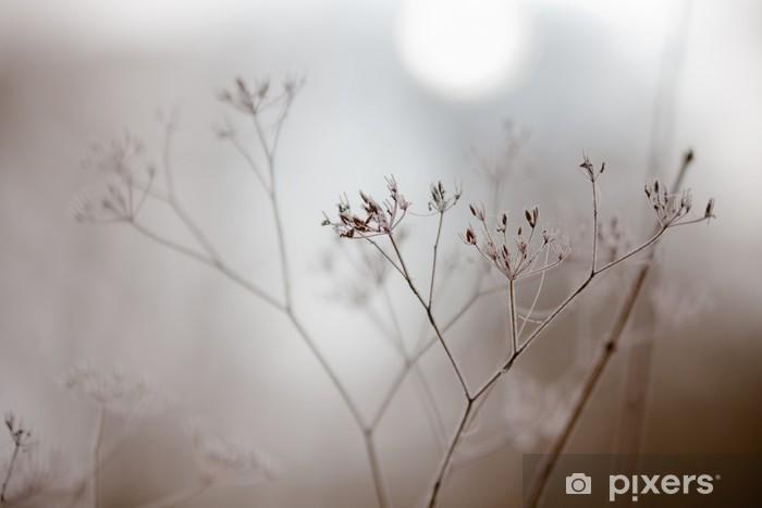 Zelfklevend Fotobehang In winterse mist - Seizoenen