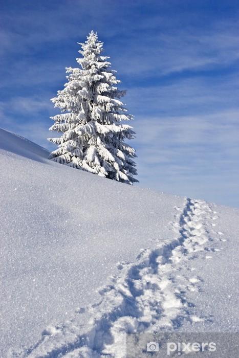 Vinylová fototapeta Winter Dream - Vinylová fototapeta