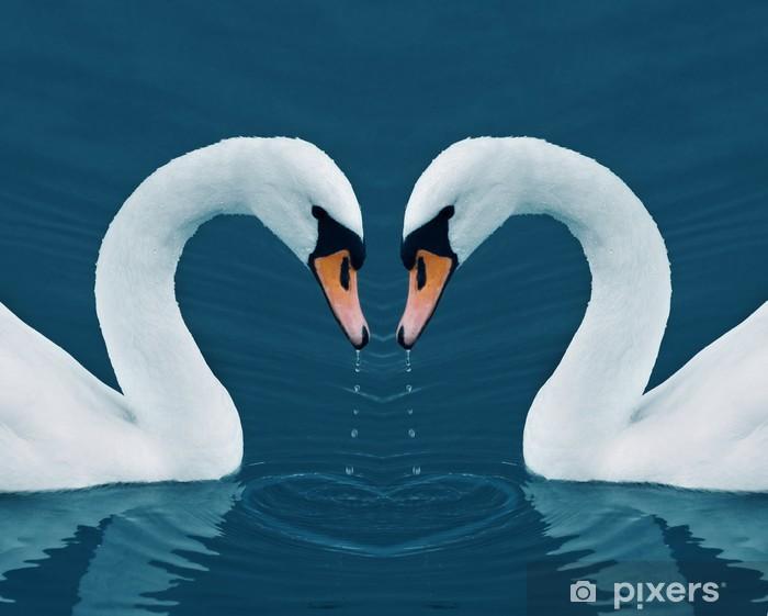 Pixerstick Aufkleber Zwei Schwäne in der Ruhe am Morgen See - Valentine Bild mit Herz - Schwäne