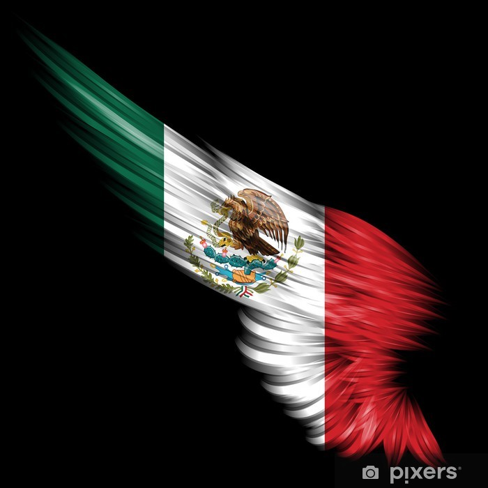 Abstract Wing With Mexico Flag On Black Background Wall Mural Pixers We Live To Change