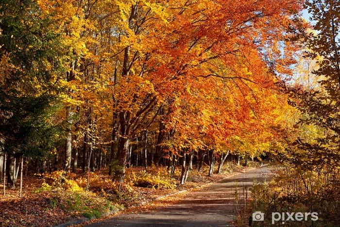 Naklejka Pixerstick Jesień w parku - Tematy