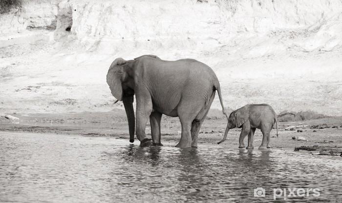 Vinilo Pixerstick Manada de elefantes africanos - Temas