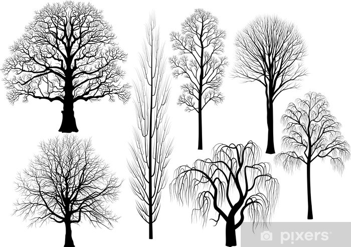 Collection of trees in black Vinyl Wall Mural - Themes