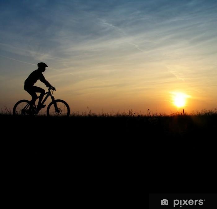 Papier peint vinyle Vélo de montagne - Cyclisme
