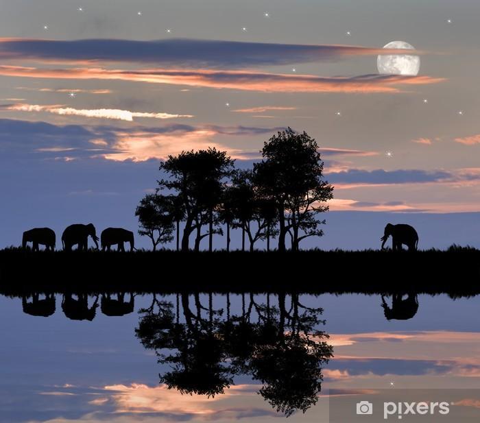 Papier peint vinyle Belle silhouette thème africain avec un ciel magnifique coucher de soleil - Thèmes